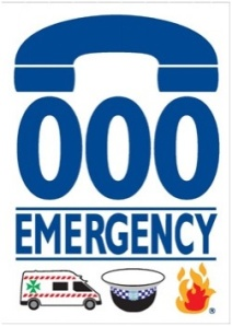 emergencyh354jpg